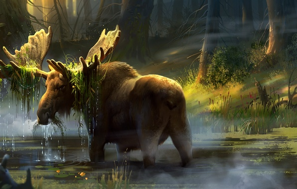 Picture forest, trees, horns, art, moose, swamp
