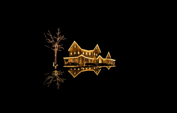 Picture light, lights, house, reflection, gold, tree, holiday, new year, house, black background, new year, structure, …