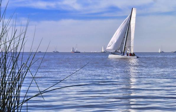 Picture sea, the sky, clouds, boat, yacht, sail, regatta