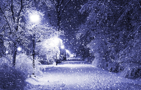 Picture winter, snow, trees, night, Park, lights