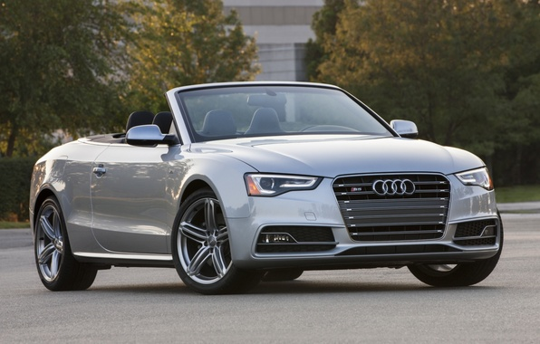 Picture trees, grey, background, Audi, Audi, convertible, the front, Cabriolet, ЭС5