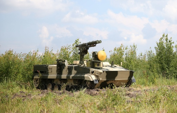 Picture camouflage, rocket, complex, Chrysanthemum, self-propelled, anti-tank, 9P157-2