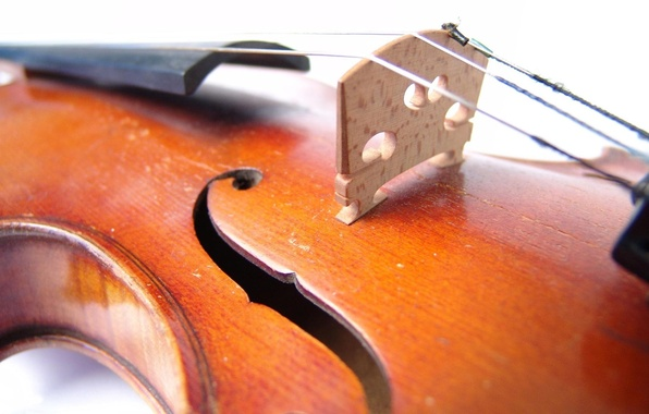 Photo wallpaper yellow, violin, music