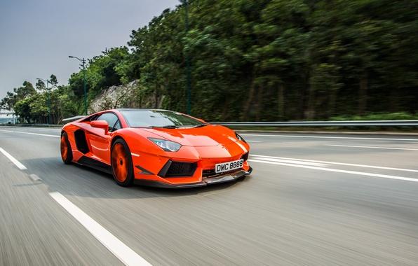 Picture car, Lamborghini, road, DMC, speed, Aventador, LP900-4
