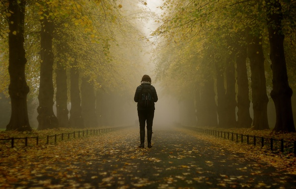 Picture girl, misty, trees, park, autumn, leaves, fog, branches, path, foggy, mist