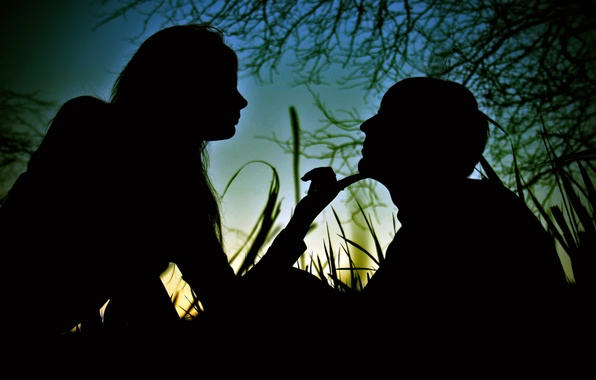 Picture GIRL, FOREST, GRASS, The SKY, GUY, SHADOWS, SILHOUETTES