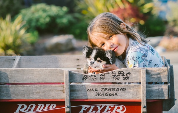Picture dog, girl, puppy, truck, friends