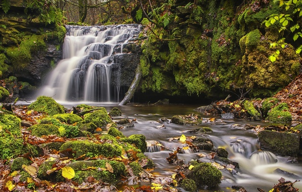 Picture autumn, leaves, England, waterfall, moss, cascade, England, West Yorkshire, West Yorkshire, Gorpley Clough Falls, Todmorden, …