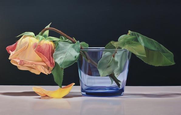 Picture flower, glass, rose, petal, art, tea