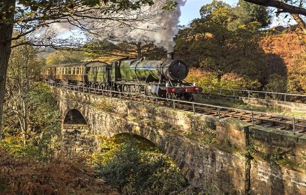 Picture bridge, nature, the engine