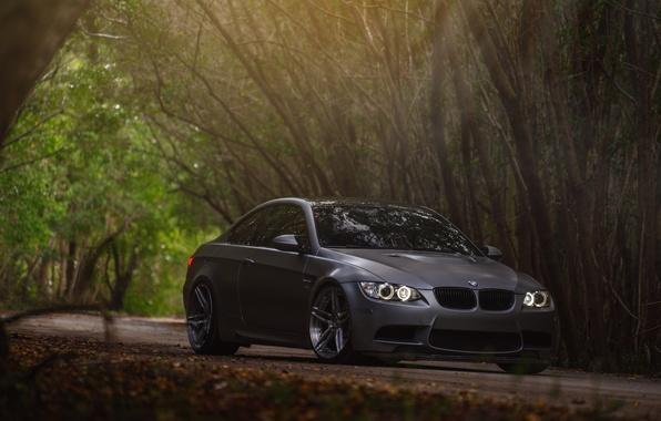 Picture car, BMW, BMW, forest, E92, Sedan