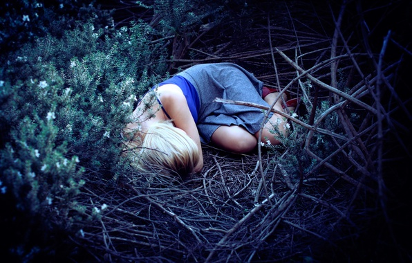 Picture forest, girl, stay, sleep