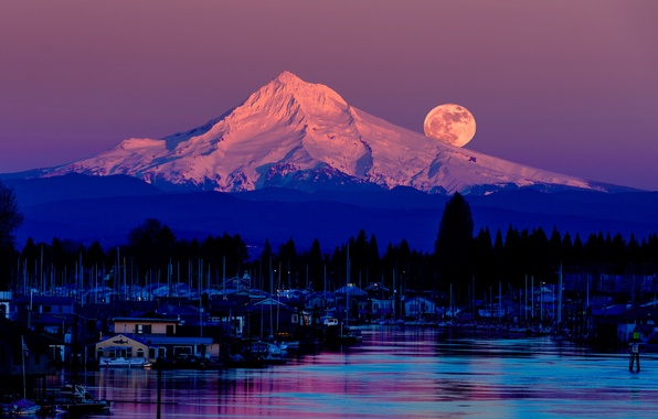 Picture forest, the sky, trees, night, lake, the moon, mountain, USA, the full moon, the village, …