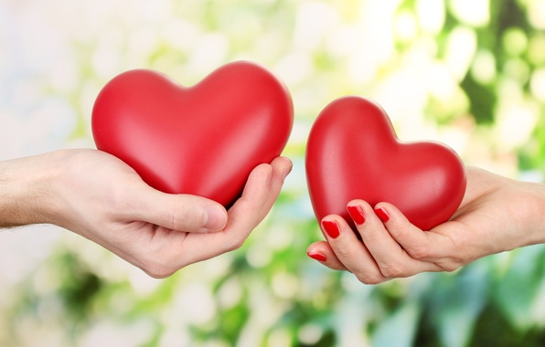 Picture love, romance, heart, hands, love, Valentine's day, hearts, Valentine's Day, hands, romance