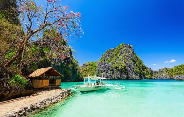 Picture sea, beach, trees, rocks, coast, house, Tropical Paradise