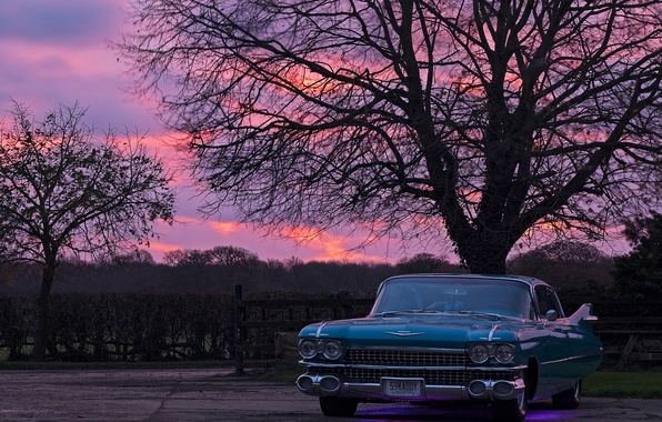 Picture retro, dawn, Cadillac, Parking, 1959, Then they Wanted to