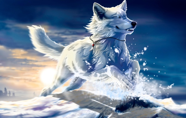 Picture white, the sun, snow, sunset, jump, Wolf, art, Fang, be free, wolfroad