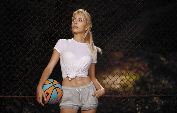 Picture girl, style, mesh, the fence, the ball, figure