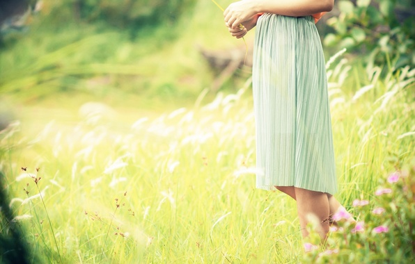 Picture greens, field, grass, girl, the sun, flowers, background, widescreen, Wallpaper, feet, mood, plant, dress, wallpaper, …