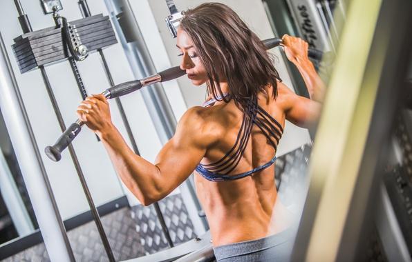 Picture female, workout, gym, bodybuilder