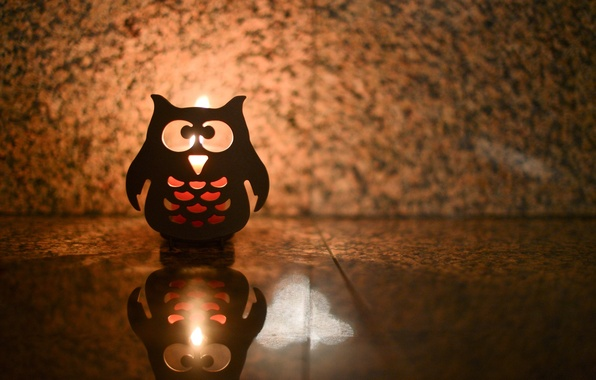 Picture light, background, fire, owl, widescreen, Wallpaper, mood, shadow, wallpaper, form, candle, widescreen, background, full screen, …