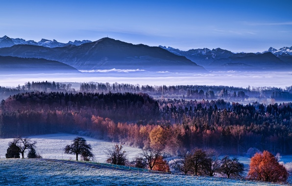 Picture winter, autumn, snow, fog, morning, valley