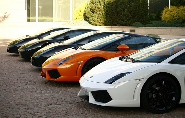 Picture white, trees, orange, black, the building, white, gallardo, lamborghini, black, front, orange, Lamborghini, Gallardo