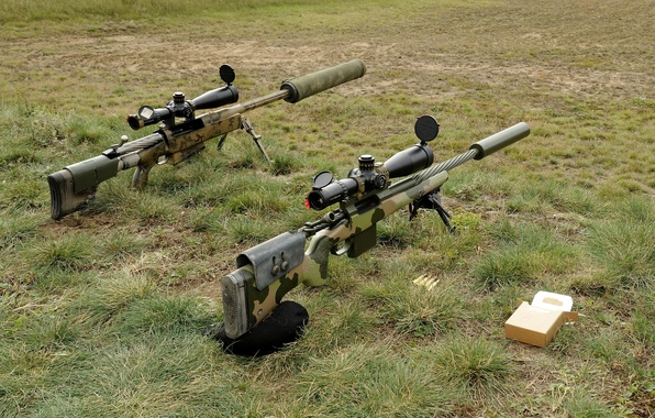 Picture grass, weapons, rifle, sniper