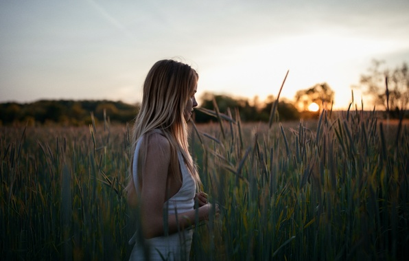 Picture field, girl, face, dawn, walk, Brittney