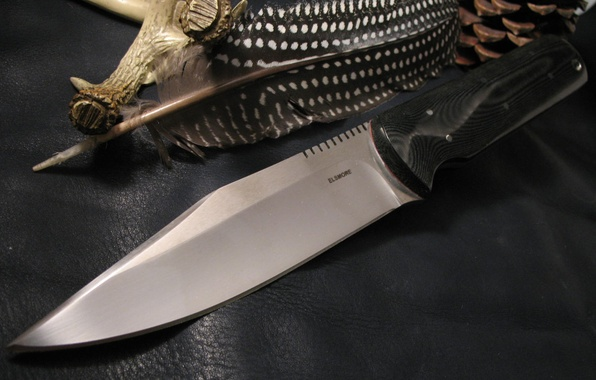 Picture pen, knife, bump, edged weapons, elsmore