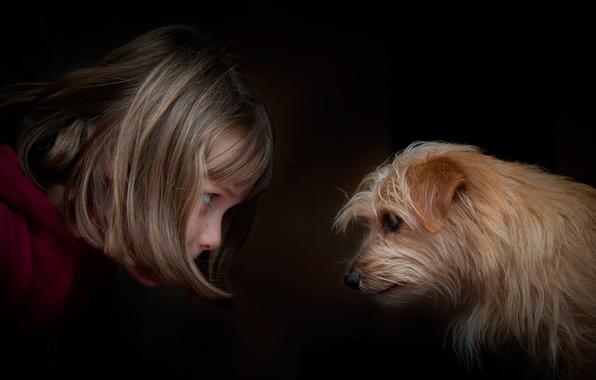 Picture girl, dog, eye to eye