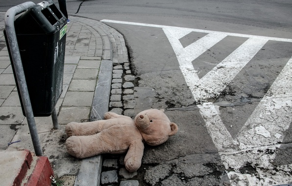 Picture the city, street, bear