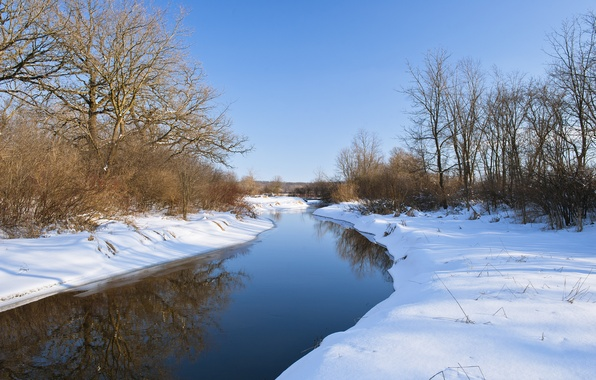 Picture winter, forest, snow, river, calm