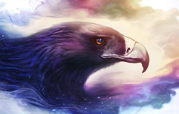Picture bird, eagle, beak, art