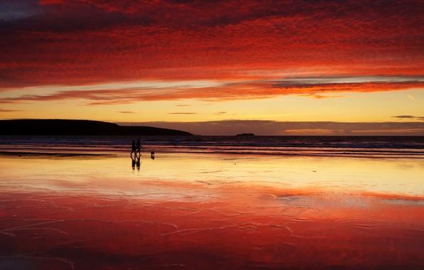 Picture sea, sunset, walk
