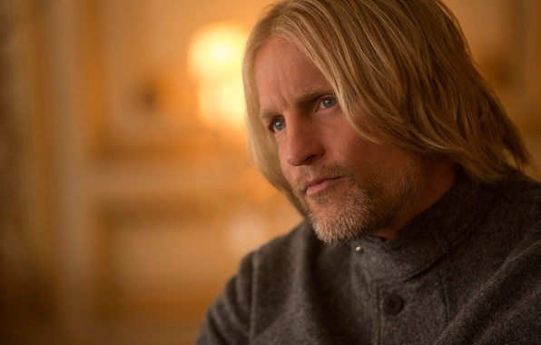 Picture Woody Harrelson, Woody Harrelson, The hunger games:mockingjay