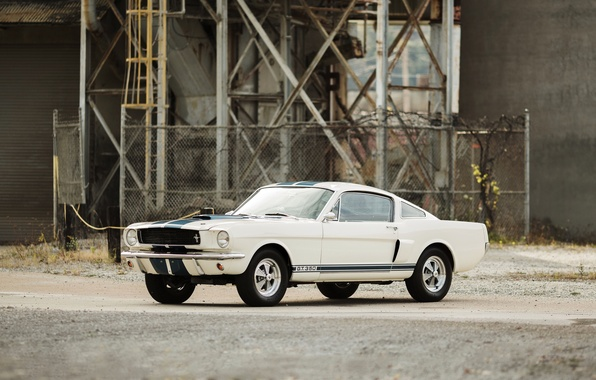Picture Mustang, Ford, Shelby, Mustang, Ford, Shelby, 1966, GT350
