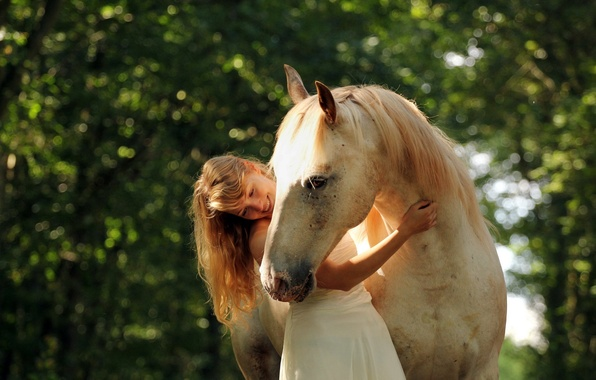Picture summer, girl, mood, horse