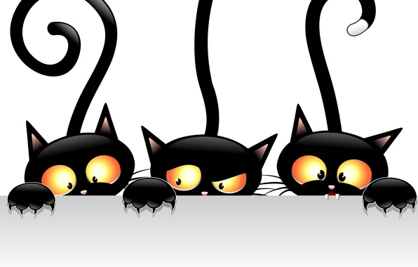 Picture cats, vector, black, views, tails
