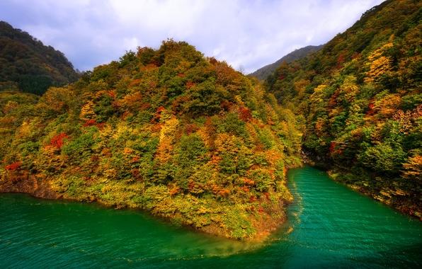 Picture autumn, forest, mountains, lake, Japan, Tazawa