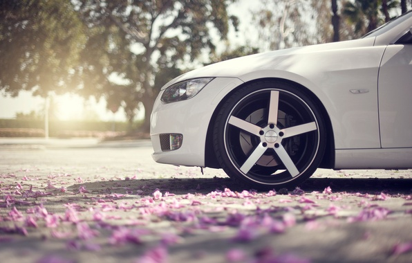 Picture asphalt, macro, glare, spring, petals, wheel, BMW, nose, white, drives, 3Series, bokeh, the front part