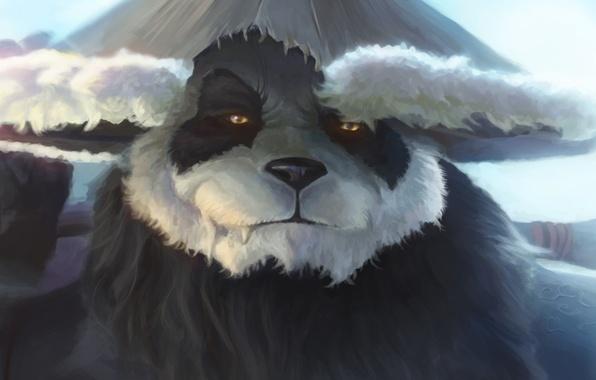 Picture World of Warcraft, Warcraft, wow, art, Mists of Pandaria, panda
