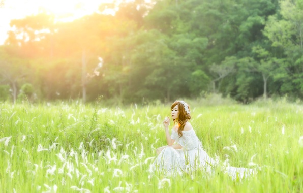 Picture summer, girl, nature, face, dress, sitting