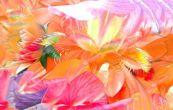 Picture leaves, flowers, nature, rendering, petals, garden