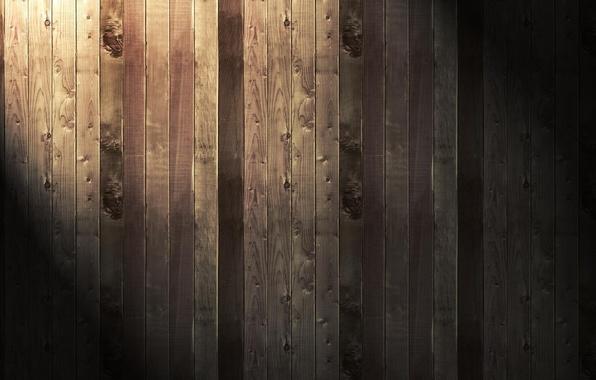 Picture light, Board, Tree
