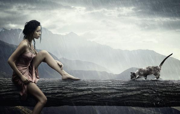 Picture cat, girl, rain, rain