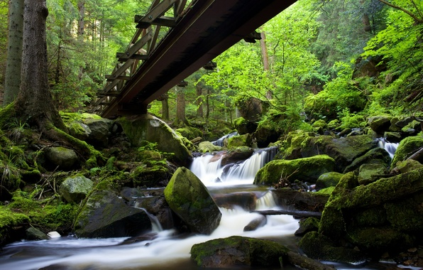 Picture forest, bridge, river, stones, Germany, cascade, Germany, Baden-Württemberg, Baden-Württemberg, Black Forest, The black forest, Ravenna …