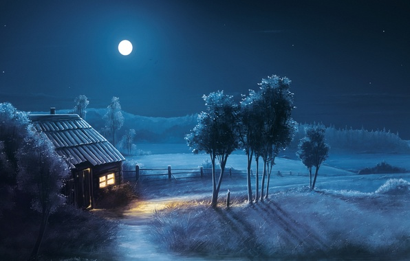 Picture field, night, house, tree, the moon