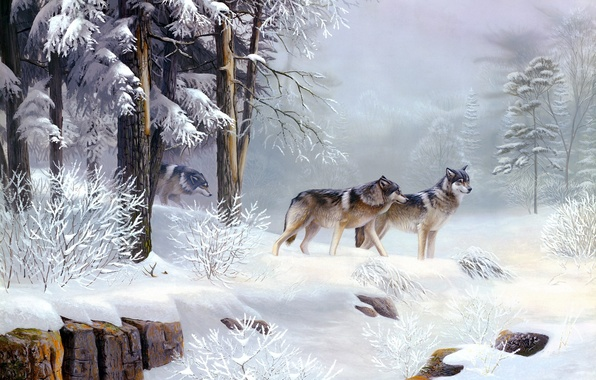 Picture cold, winter, forest, animals, morning, wolves, painting, Morning Solitude, Leo Stans, frosty