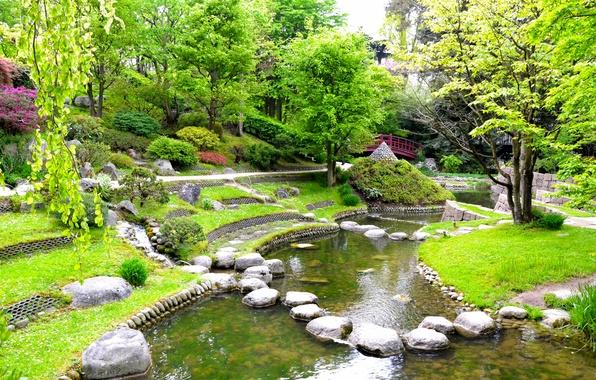 Picture grass, trees, pond, stones, France, Paris, garden, the bridge, Albert-Kahn Japanese gardens